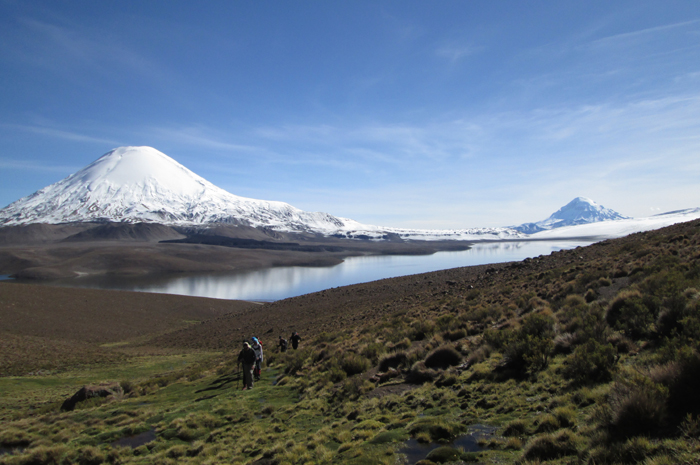 Parinacota and Laguna Chungara from near our acclimatisation camp.