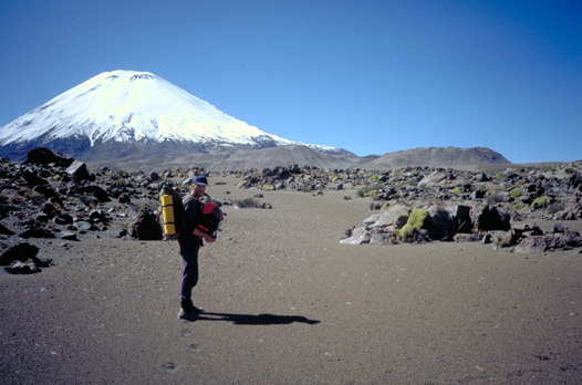 Walking towards Parinacota volcano from the Chilean side,  over the lava desert